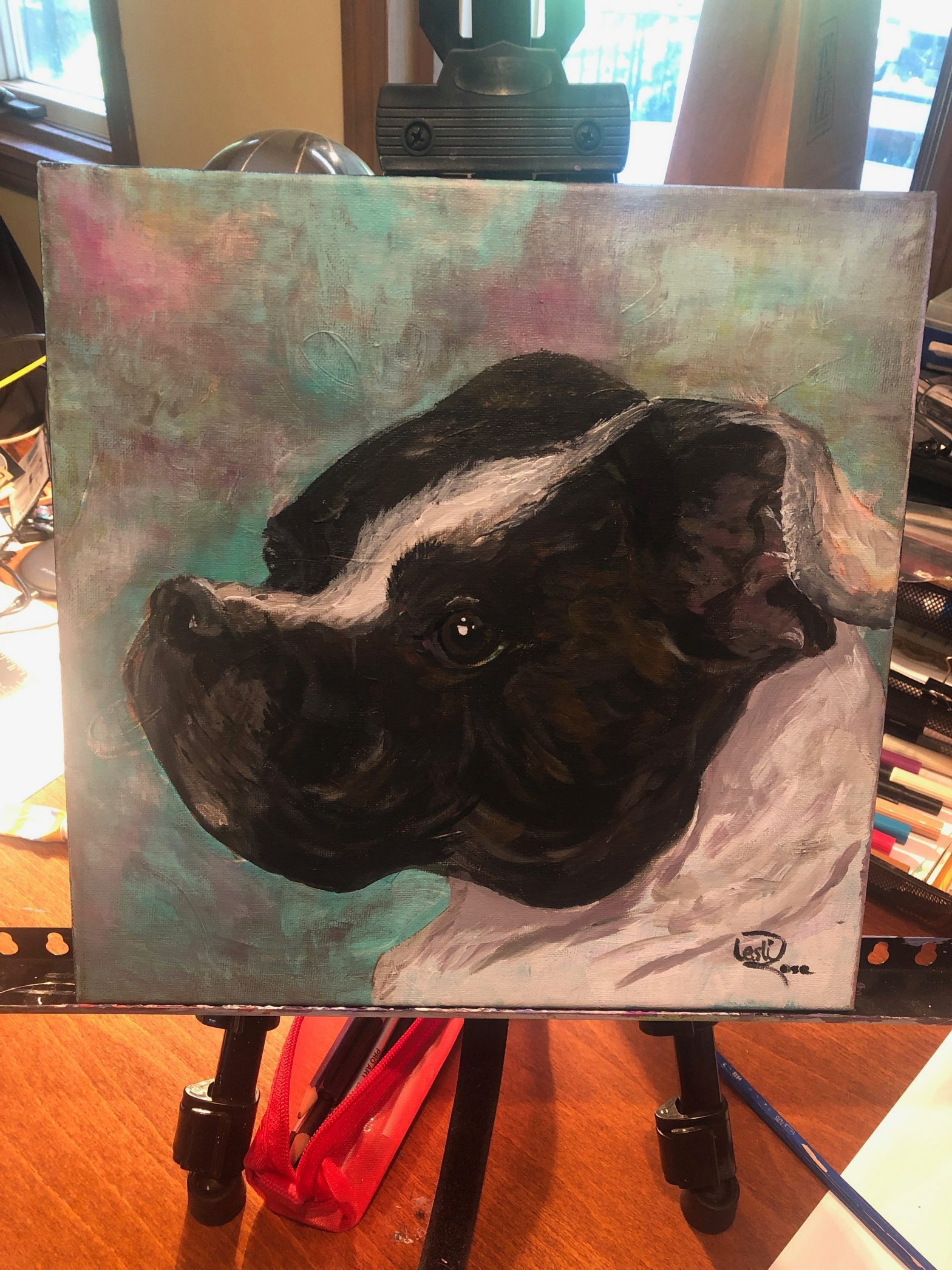 commissioned pet portraits